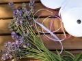 Lavendel_Staebe02