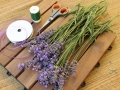 Lavendel_Stern01