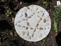 stepping_stones_29