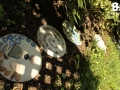 stepping_stones_30