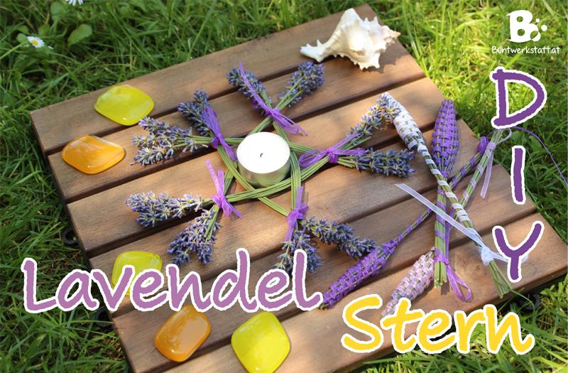Lavendel Stern