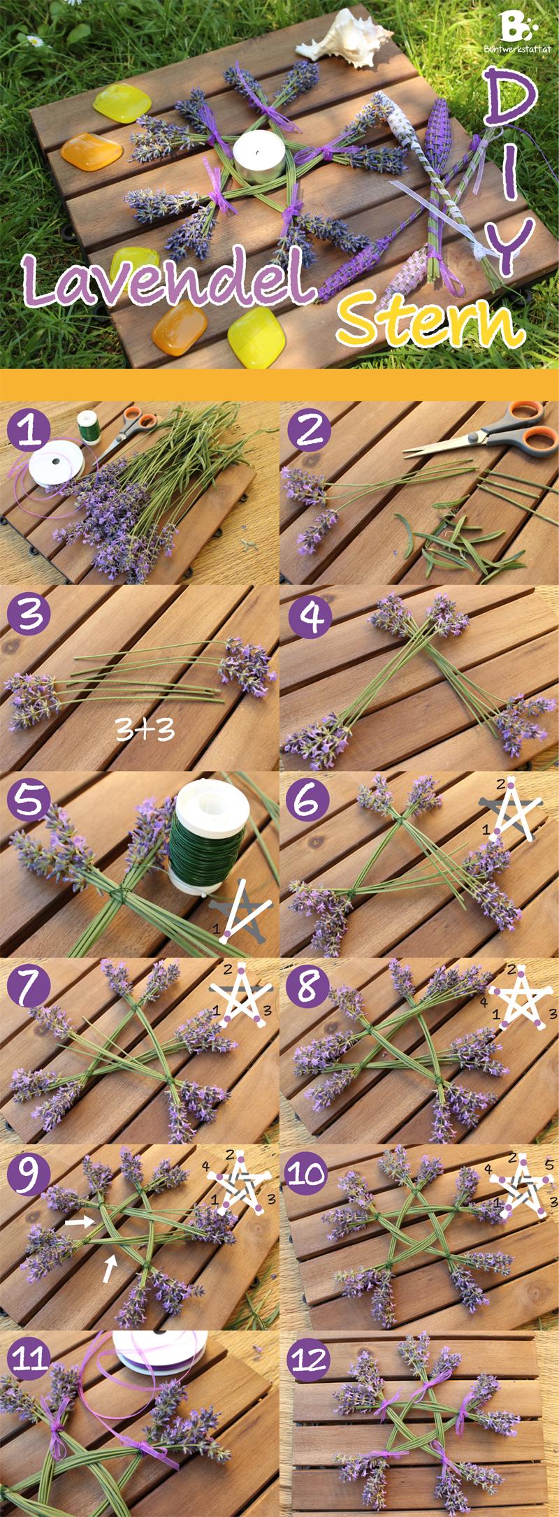 Lavendel Schneiden Anleitung : lavendel stern ~ Lizthompson.info Haus und Dekorationen
